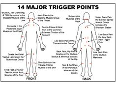 Balance in Motion, Massage Therapy | - 10 Major Trigger Points/The Mystery of Pain Referral and Trigger Points