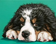 Bernese Mountain Dog Art  Matted Print of by JenBrandonStudio