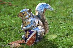 Sir Nutalot