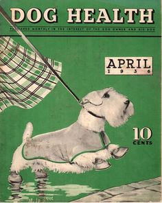 Vintage Dog Health Magazine April 1936 Sealyham Terrier Cover