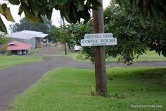 Greenwell Farms Kona Coffee, Hawaii.