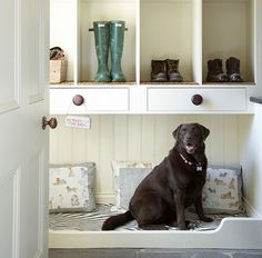 built-in dog bed in mudroom