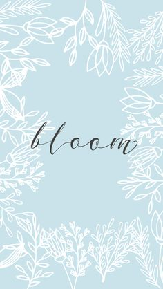 Pastel blue white floral frame Bloom iphone phone wallpaper background lock screen