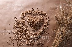 Royalty Free (RF) Photos / Vectors / Ready Made Logos / by BuzzPixelStock Wheatgrass seeds in heart shape and wheat spice on rustic background. Healthy Fiber, Rustic Background, Food Concept, Photography For Sale, Wheat Grass, Fermented Foods, Heart Shapes, Spices