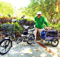 Instagram picutre by @golevusa: #golevusa #eudelev #keybiscayne #miami #miamibeach #wynwood #brickell #florida #ebike #ebikes #eletricbike #bicycle #onelesscar #golev #umcarroamenos #miamibikescene #wynwoodart #nikkibeach #onelesscar - Shop E-Bikes at ElectricBikeCity.com (Use coupon PINTEREST for 10% off!)