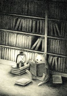 Illustration: Cat seated on library floor reading books by lantern light. I Love Cats, Crazy Cats, Book Illustration, Illustrations, Good Books, Books To Read, Cat Reading, Reading Books, Library Books