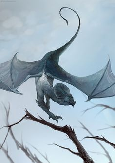 Stunning Fantasy Illustrations by Sandra Duchiewicz Do yourself a favor: find some friends in the black/latino/LGBT+ communities tonight. They're going to need your help- possibly protection. Fantasy Dragon, Dragon Art, Fantasy Art, Dragon Pics, Magical Creatures, Fantasy Creatures, Dragon's Lair, Beautiful Dragon, Dragon Design