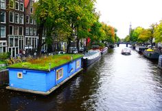 meadow-roofed Amsterdam houseboat