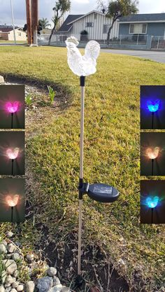 Pig color changing solar lights set of 2 for outdoor garden and rooster color changing solar stake lights set of 2 for outdoor garden workwithnaturefo
