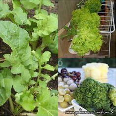 Todos sabemos que verdes no prato são sinal de alimentação equilibrada e saudável. Mas qual é a função de cada espécie de folha? Verduras que Melhoram a Qualidade de Vida!  Artigo aqui => http://www.gulosoesaudavel.com.br/2014/09/01/verduras-melhoram-qualidade-vida/