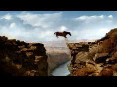 "Budweiser Super Bowl Commercial 2009 ""Circus"""