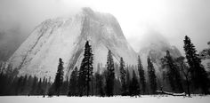 https://flic.kr/p/9AqCBh | just after snowstorm from El Capitan Meadow