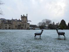 Christmas Snow at Castle Donegal, Castle, Snow, Christmas, Xmas, Castles, Navidad, Noel, Natal