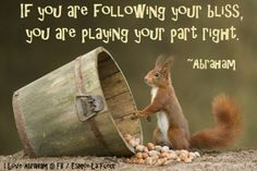 Abraham-Hicks ...following your bliss....