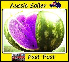 New Purple Flesh Watermelon Seeds New Varietie of Water Melon  Edible Fruits