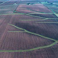 Grassed Waterways Soil Conservation, Management
