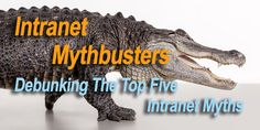 Intranet Mythbusters: Debunking The Top Five Intranet Myths Top Five, Collaboration, Software, Business, Movie Posters, Tops, Film Poster, Popcorn Posters, Shell Tops