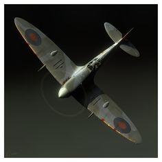 Portrait of a Spitfire, by Wiek Luijken