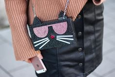 franziska-elea-blogger-aus-muenchen-fashionblog-mini-rock-fashionblogger-leder-rock-mit-knoepfen-karl-lagerfeld-tasche-katze-iphone-se-rose