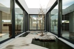 internal courtyard water garden / Valadares House