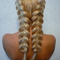 Fish tail double braid