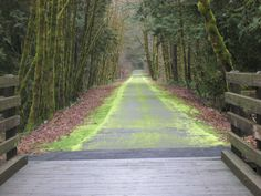 Vernonia Bicycle Trail, Vernonia, OR