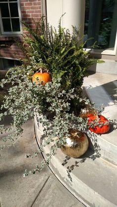 Fall Front Porch. #rsvpshindig #fern #urn #pumpkins #goldpumpkins #fall