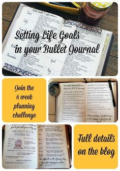 Are you looking for help with setting long-term goals in your bullet journal? The head over to my blog for a free 6 week planning challenge! #bujo #bulletjournal # planner