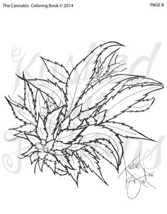 The Cannabis Coloring Book Vol 1 Issue By KUSHiNFORMER Magazine