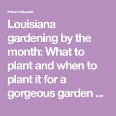 Louisiana gardening by the month: What to plant and when to plant it for a gorgeous garden all year long