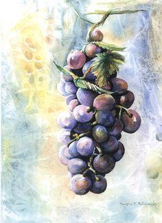 Grapes   marjoriemccullough.com