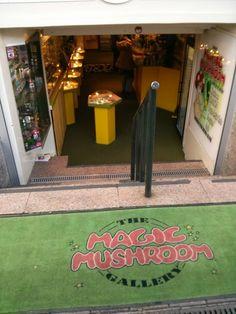 The Magic Mushroom Gallery