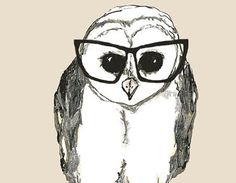 bespectacled owl print