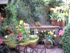 Master gardener Maureen Gilmer gives tips on designing a great outdoor space.
