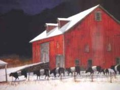 Red barn and Belted Galloway cows