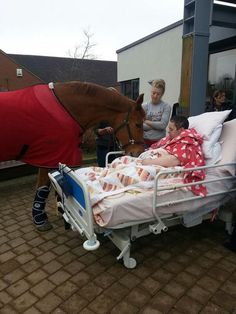 A woman lost her battle against cancer about a month ago. Her last wish was to see her horse Sharron. The Keetch Hospice (where she was at) allowed and arranged for her horse to come visit one last time.
