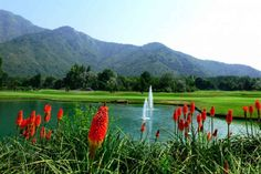 #NEWS #SWD #GREEN2STAY J&K to get an eco-park for tourism boost The park being developed on Koteranka area will be a one stop destination for eco-tourism, children excursions, study tours, home-stays, amusement and different other activities By: PTI | Published: August 7, 2017 2:30 PM