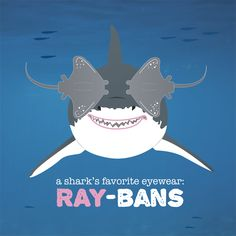 Friday fun! Fun fact: Sharks have a protective membrane that covers their eyes when attacking prey. Humans don't; we need all the eye protection we can get!