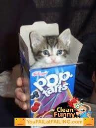 Too cute! :)