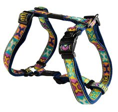 Rogz Beachbum Adjustable Dog H-Harness * Insider's special review you can't miss. Read more  : Dog harness