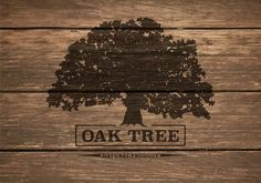 Free Oak Tree Silhouette On Wooden Background Vector - Download ...