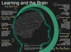 Learning and The Brain- a few quick facts