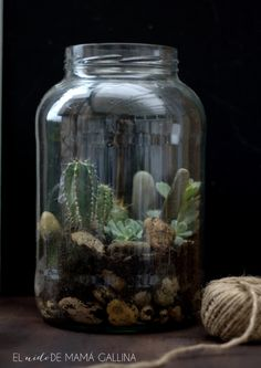 Cómo hacer un terrario con plantas suculentas paso a paso Glass Containers, Glass Bottles, Home Crafts, Diy Crafts, Glass Garden, Cacti And Succulents, Bottle Crafts, Garden Projects, Simple