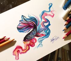 158- Betta Fish by Lucky978.deviantart.com on @DeviantArt