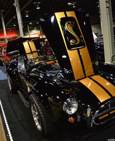 Shelby Cobra - -ℛℰ℘i ℕnℰD by Averson Automotive Group LLC Mustang Shelby Cobra, Ac Cobra, Shelby Car, Mustang Cars, 1965 Shelby Cobra, Custom Muscle Cars, Custom Cars, Us Cars, Sport Cars