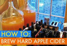 HOW TO: Make Your Own Delicious Hard Apple Cider In 6 Easy Steps | Inhabitat - Sustainable Design Innovation, Eco Architecture, Green Building