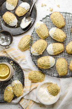 Recipe for Lemon Poppyseed Madeleines with Lemon Cream Cheese Icing. Light sponge cake texture with a wonderful lemon zest flavor. Perfect bite size cake servings and easy to freeze.