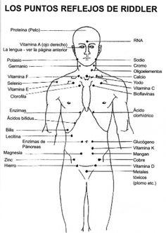 Puntos Riddler para testar deficiencias y toxicidades.