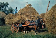 National Geographic captures color and beauty of Ireland in 1927 (PHOTOS) Farmers stack hay on their farm in County Cork. Old Photos, Vintage Photos, Irish Free State, National Geographic Photographers, Old Irish, Images Of Ireland, Irish People, County Cork, Impressionist Paintings