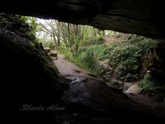 Looking out from Waipu Caves,  Whangarei, Northland, New Zealand